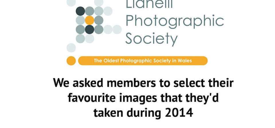LPS Members Share Their Fave Images Of 2014
